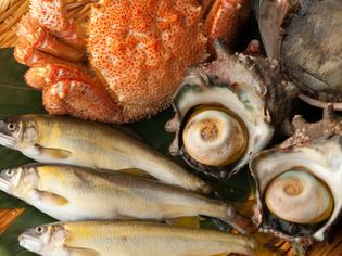 毎日、吟味して仕入れる『新鮮な魚介類』