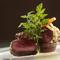 コース料理のメインである見た目からも楽しめる『肉料理』