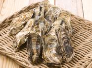 穏やかな波に育まれた『牡蠣』 1.3kg:約2名様分