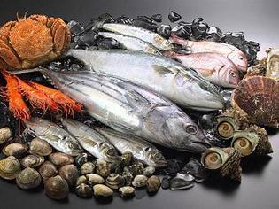 「魚介類全般」の扱いが得意です