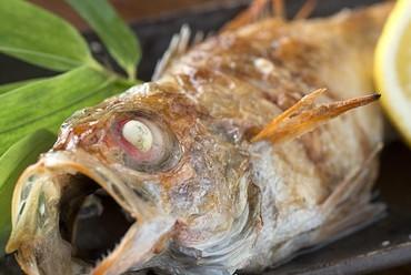 人気の高級魚をシンプルに塩焼で。『のどぐろ塩焼き 大』