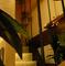 2階完全個室はリピーター多数な空間。大切な会にぜひ
