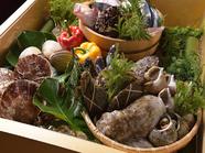 その日獲れた新鮮な魚が味わえる『若狭天然お造り盛合せ』