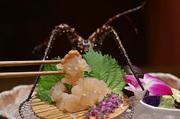 伊勢志摩の新鮮な伊勢海老、アワビ、松阪牛がリーズナブルな価格でお楽しみいただけます