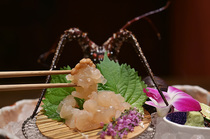 「美しき国」伊勢志摩からお届け『伊勢海老、アワビ、松阪牛』