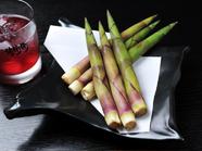 アクがなく柔らかな食べごたえ『地竹』