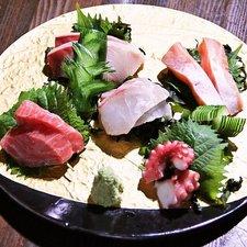 朝獲れ鮮魚のお造り五種盛り合わせ