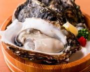 UMAMIで提供する牡蠣は大きさが特徴!なるべく大ぶりで食べ応えある牡蠣を市場より入荷します!