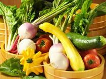 横浜地野菜を中心に市場より新鮮なお野菜を入荷!
