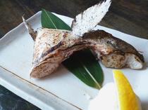 炭火で旨味を封じ込めた『カマ焼き』は真鯛とカンパチの二種