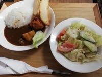 お子様向けの宮崎牛カレー(甘口)です。サラダとセットになっています。