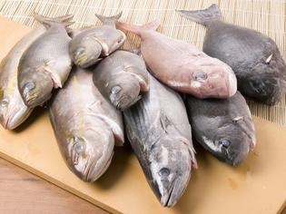 朝獲れ鮮魚の、新鮮さを保ち続けること