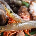 寄島漁港からその時々のおいしい魚介を直送
