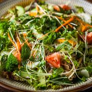 冷麺が入った盆皿いっぱいのサラダ。ドレッシングも自家製で、野菜と冷麺との相性も抜群。