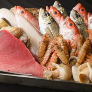 四季の旨みをたっぷりと堪能できる「金沢中央市場」に届く海の幸