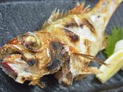 素材本来の旨さを堪能!のどくろをはじめ日本海で採れた鮮魚をご用意。仕入れもとことんまでこだわります!
