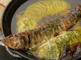 『お刺身』や魚料理で堪能できる日々選りすぐる旬の魚介