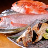毎日店主が目利きして仕入れる、一番美味しいタイミングの魚