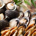 サザエ、流れ子(とこぶし)、長太郎貝(ヒオウギガイ)、白はまぐり、岩牡蠣 等、様々な貝もお楽しみ頂けます。 ※天候等により入荷状況変わります。ご了承ください。