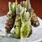 お刺身の薬味や、料理のアクセントに絶品の生わさび