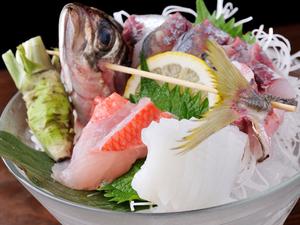 その日仕入れた鮮魚から料理人が厳選する『おまかせ盛り合わせ』