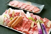 素材にこだわり厳選吟味。タン、ハラミ、牛ロース、鶏肉、国産豚など、ボリューム感たっぷりの盛り合わせ。
