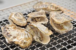 プリップリの新鮮牡蠣を網焼きで。自然の旨味が味わえる『牡蠣』