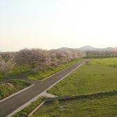 季節ごとに表情をかえる桜並木と田園風景を愉しみながら