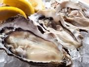Oyster&Seafood Lamar de lamere