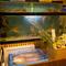 生けすには10種類以上の魚介類