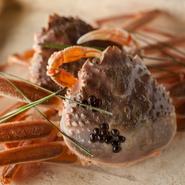松葉ガニのメス「香箱」。卵を楽しむためのカニといわれるだけに、鮮度、卵の質と量を重視して厳選しています。火を入れた後、ごはんや和え物などにアレンジ。冬の一時期だけしか味わえない絶品です。