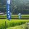 青い空、緑の山。自然がいっぱいの場所でお米がつくられています