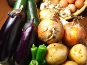 炭火焼野菜 八百起