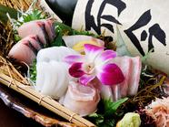 四季折々の美味しい鮮魚を満喫『刺身盛り合せ』