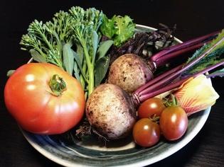 実際に食べていただければわかる、安全な「野菜」