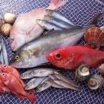 時には採れたての九十九里の魚介と、契約農家から取り寄せる野菜