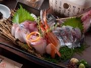 産地直送 お魚とお野菜 海ばたけ 越谷店