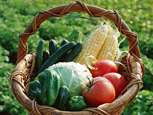 北海道産の野菜をたっぷり使います。旬の恵みに感謝して