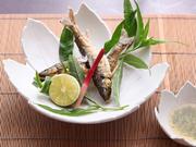 漁解禁の夏にしか味わえない天然「鮎」。地元、砺波の庄川より獲れたてが自慢です。頭からガブリとどうそ。