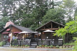 Cafe Harmonyの料理・店内の画像2
