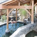 立ち見の湯、寝ころびの湯など、幾種類もの温泉を楽しめる施設