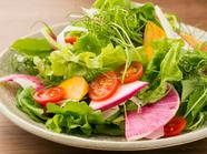 野菜本来の旨味を味わえる『静岡県北山農園さんの野菜と果物のローカルサラダ』
