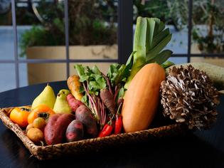 「身体に良い」をテーマに、全国の生産者から届いた完熟野菜