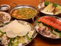 野菜たっぷりの料理とコースも充実、カクテルの種類も多数