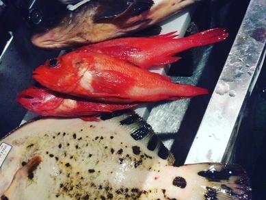 日本全国の生牡蠣食べ比べ