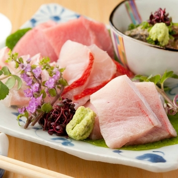 旬鮮魚の刺身5種盛など楽しめるお気軽コース