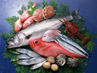 新鮮な魚とオリジナルソースの研究に余念がありません