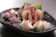 福井県産。北陸以外ではめったに会えない通の食材、『がす海老』