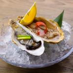 厚岸産なま牡蠣(一個)