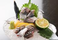 鮮魚の造り